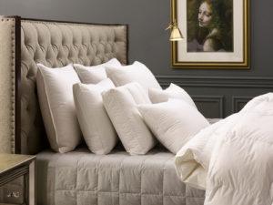 Down Inc Pillow Examples Organic