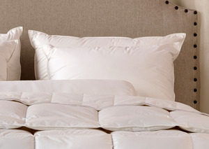 Down Inc Organic Pillows